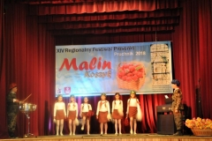XIV RFP Malin koszyk 013